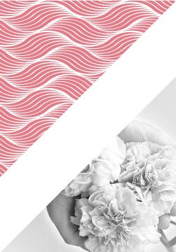 Illustration-faciapulsologie-celine-marty